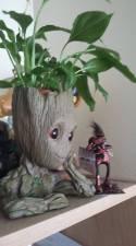 Groot loves Screwed Sculpts!